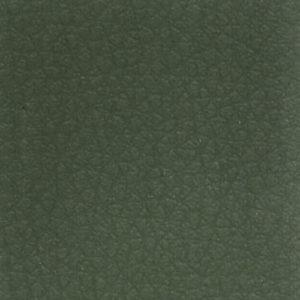 Finta pelle Tipo C Verde 7EW